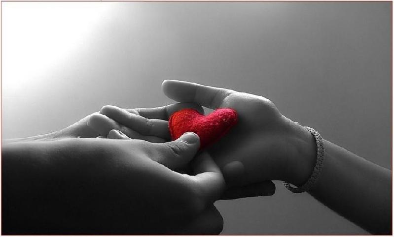 Aşk Uğruna Yaptıklarımız