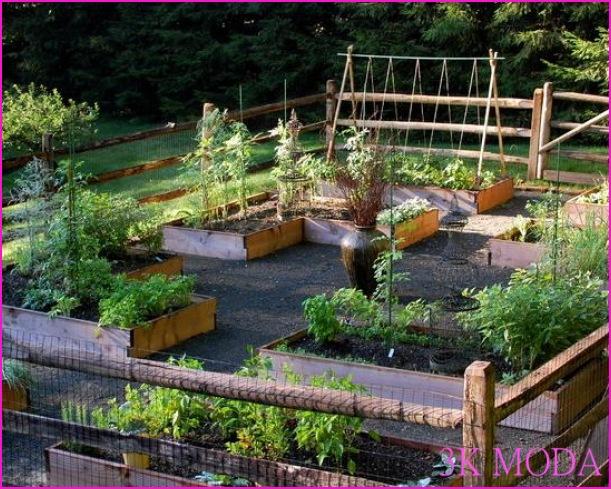Bahçe Düzenleme Örnekleri || Ev Dekor › DEKOR SARAYI, DEKORASYON ...