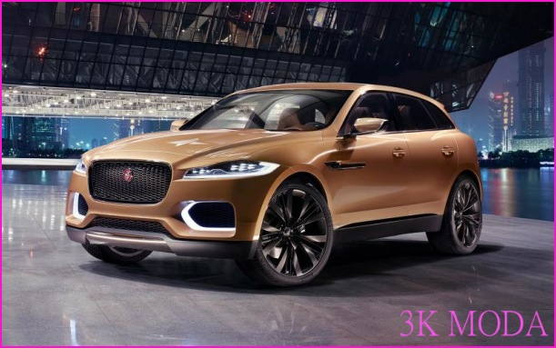 Jaguar Pace_3.jpg